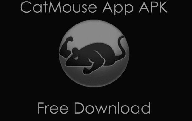 catmouse app
